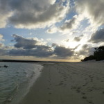 Heron Island beach. Photo A. Van Den Heuvel